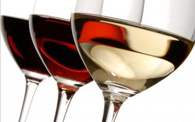 Envie d'apprendre à goûter les vins ? Ces cours d'œnologie sont faits pour vous !
