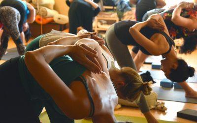 Cours de Yoga : Deuxième créneau !
